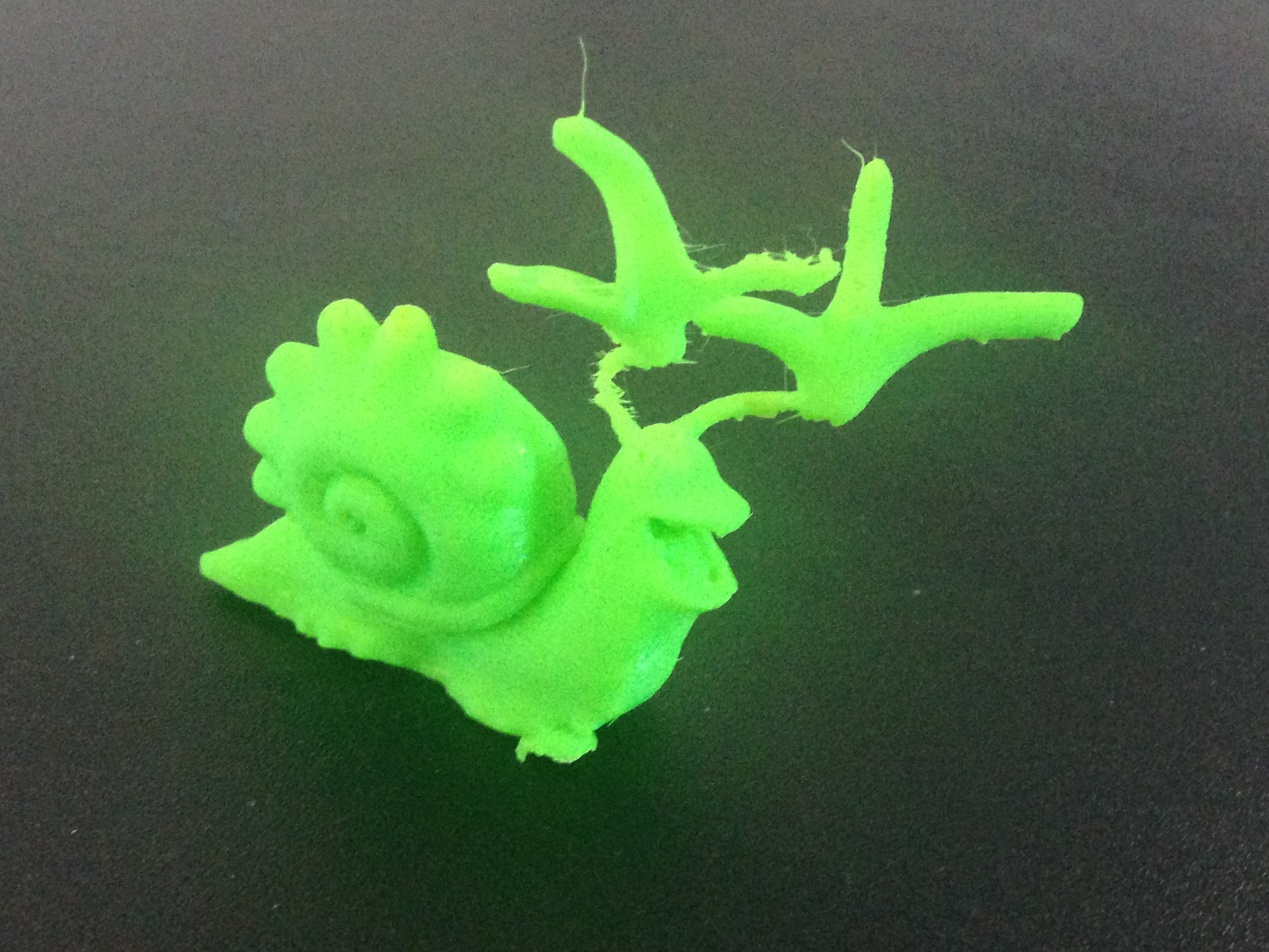 Final Print with support removed